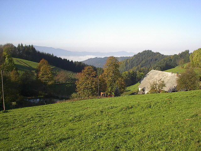 Enkelt nyttårs Schwarzwald