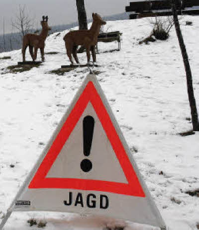 Freiburg Schwarzwald De Jagd Wild Hege Waldpflege Und Jager