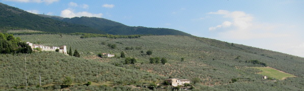 View from Trevi to south-east ober olive-trees to Mte Serano (1426 m) - 4. Oct 2009